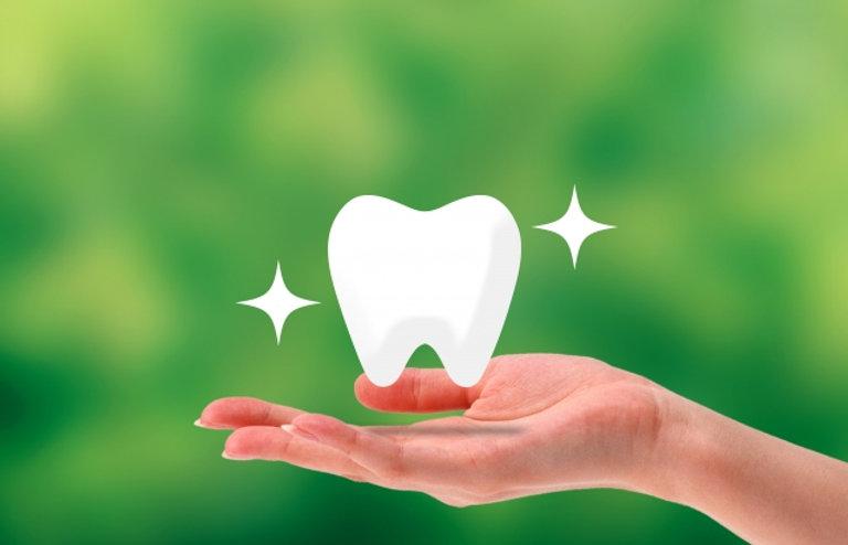 歯者の背景