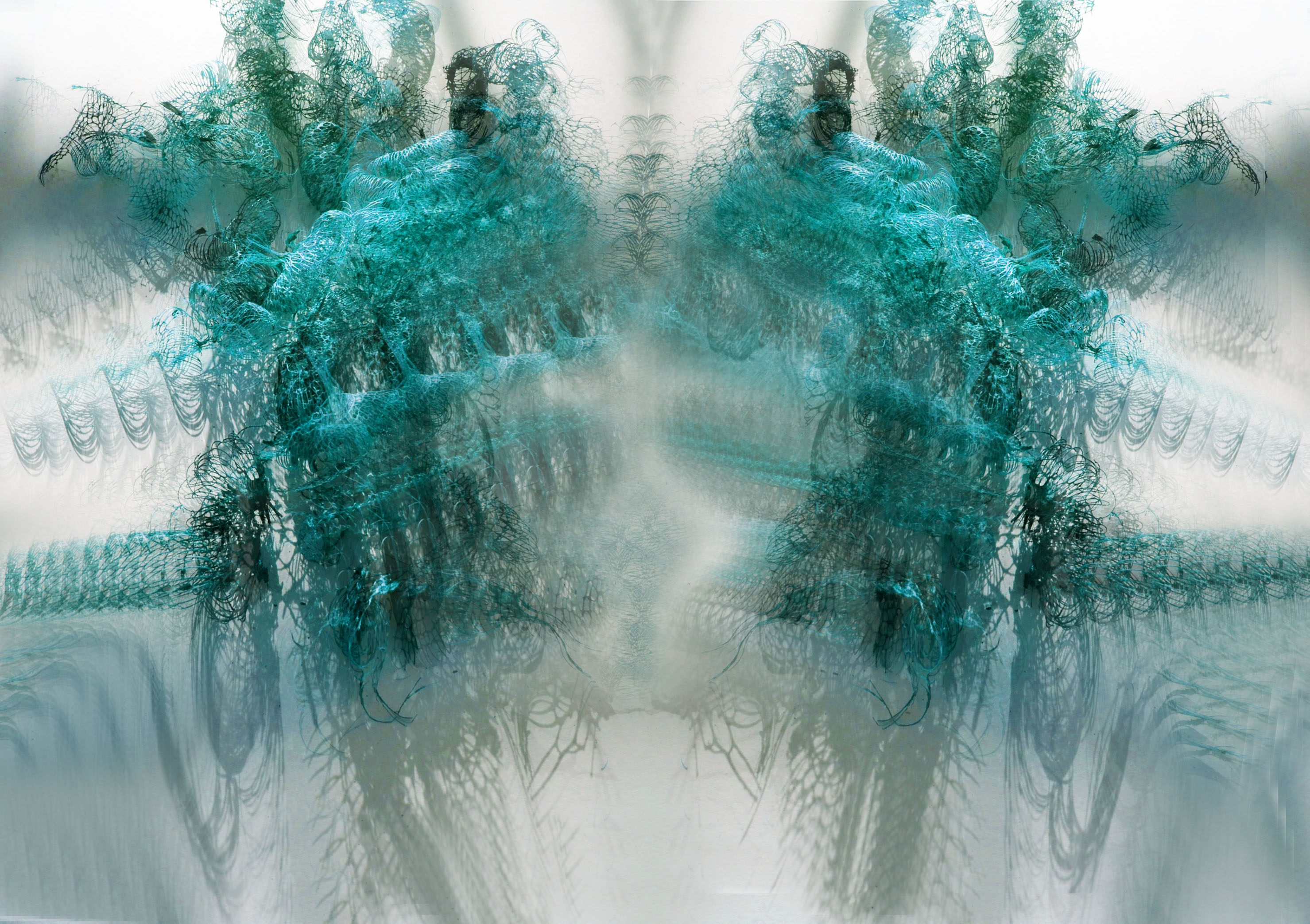 SPECIES-005d