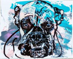 dog 2 (2016)