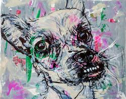 dog 4 (2016)