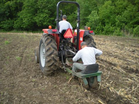 Machine Planting of Seedlings.png
