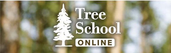Tree School.JPG