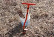Hand Planting Seedlings.png