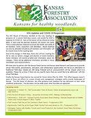 KFA Newsletter Summer 2020.jpg