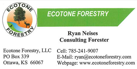 Ecotone Forestry.JPG