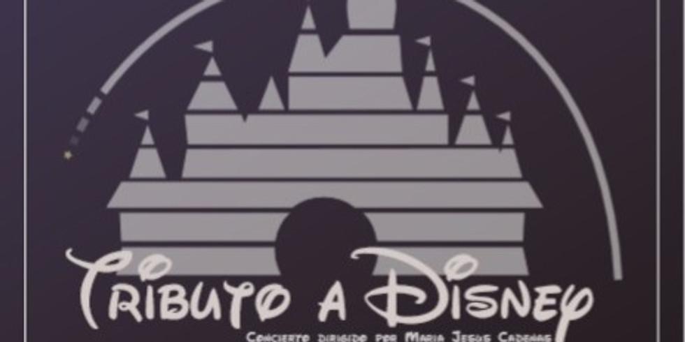 Concierto Tributo a Disney 2019