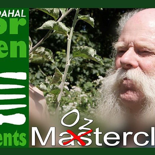 May Masterclass, Fruit Trees and Bushes