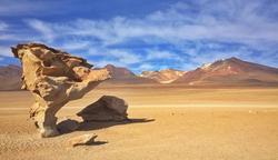 Desert Dali