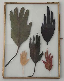 handen3b.jpg