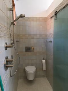 shower door toilet showe.jpg