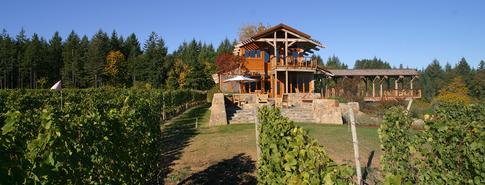 1 vines:front:bridge.TIF