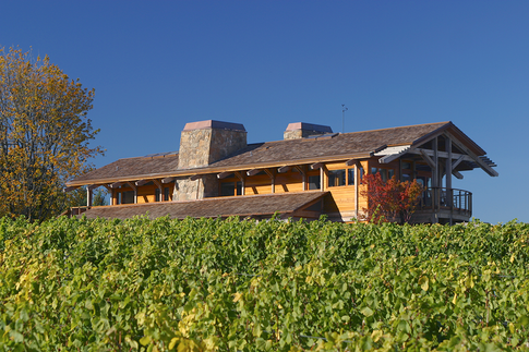 3 vineyard:s.elev.TIF