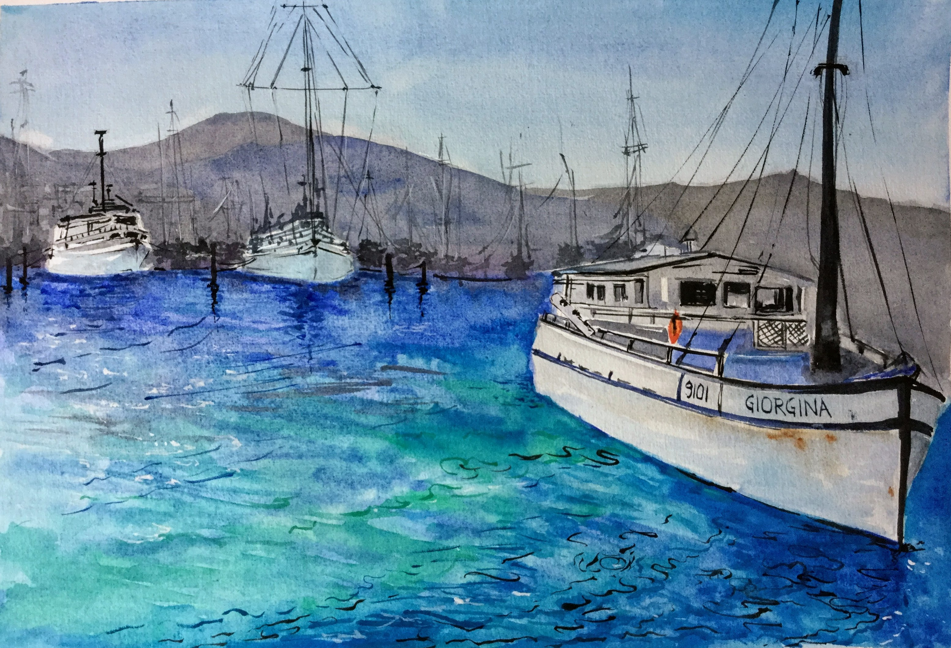 Oriental Bay Harbour - Wellington