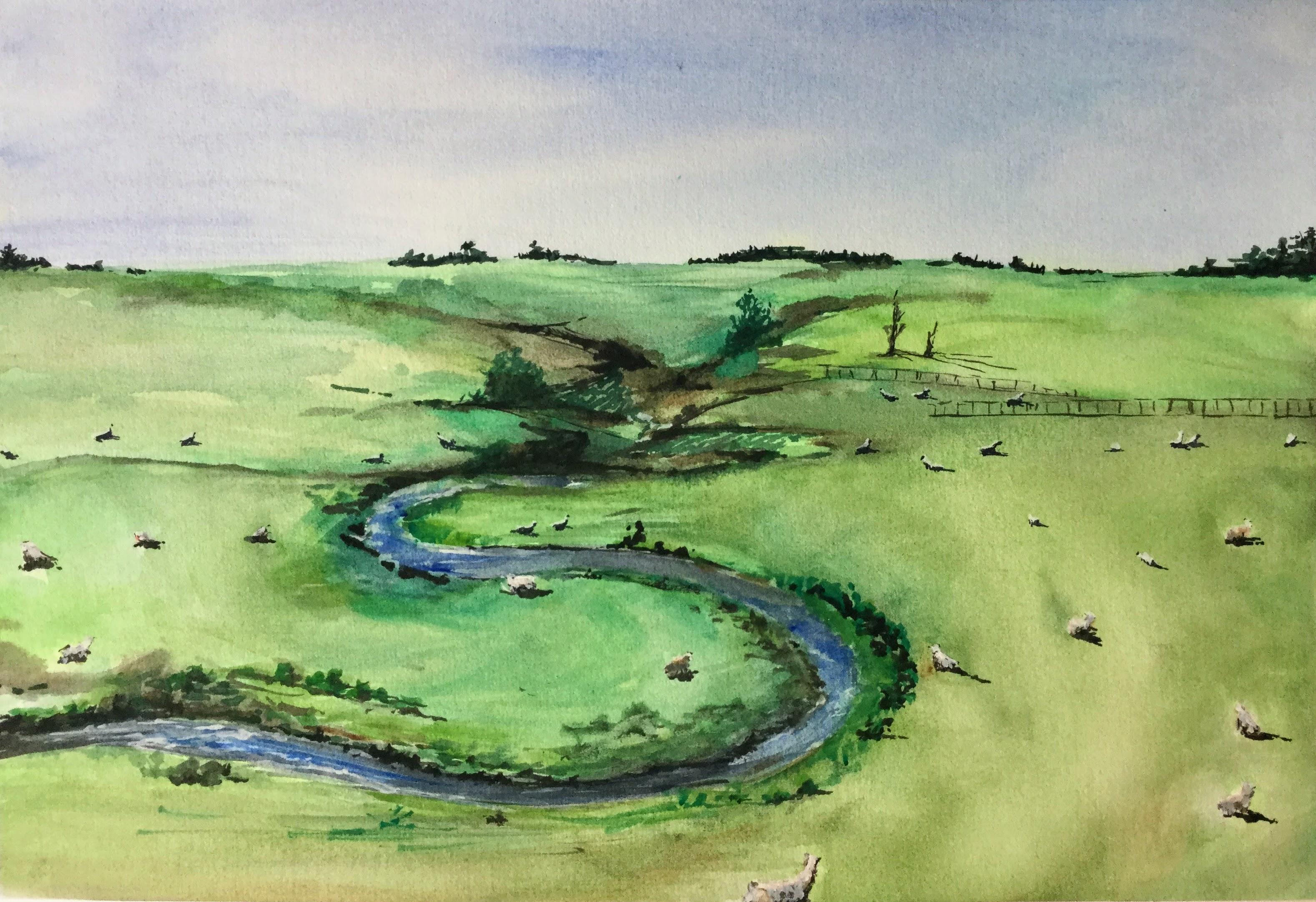 Meadow & sheeps