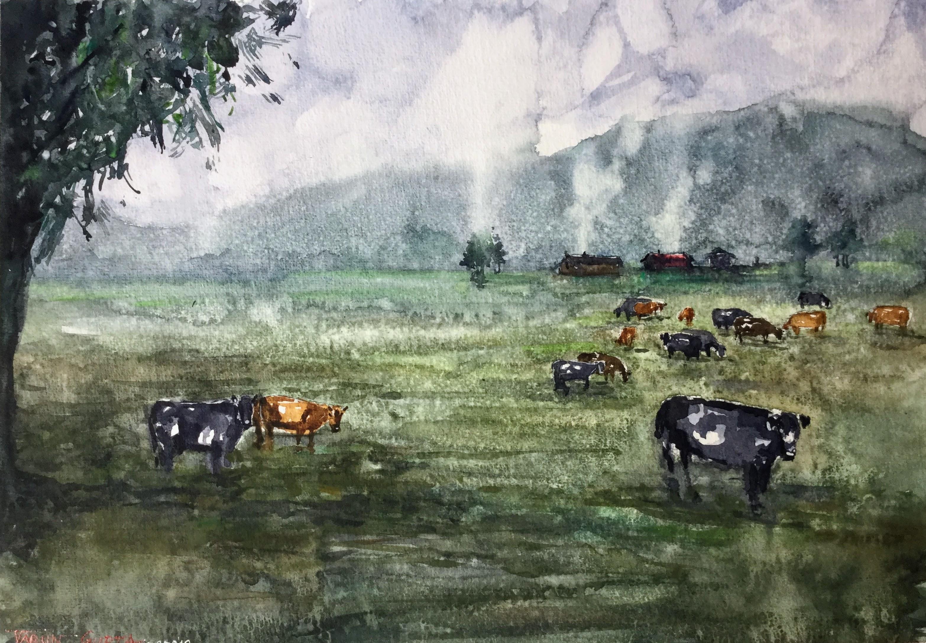 Misty Grazing Hours - Palmerston North N