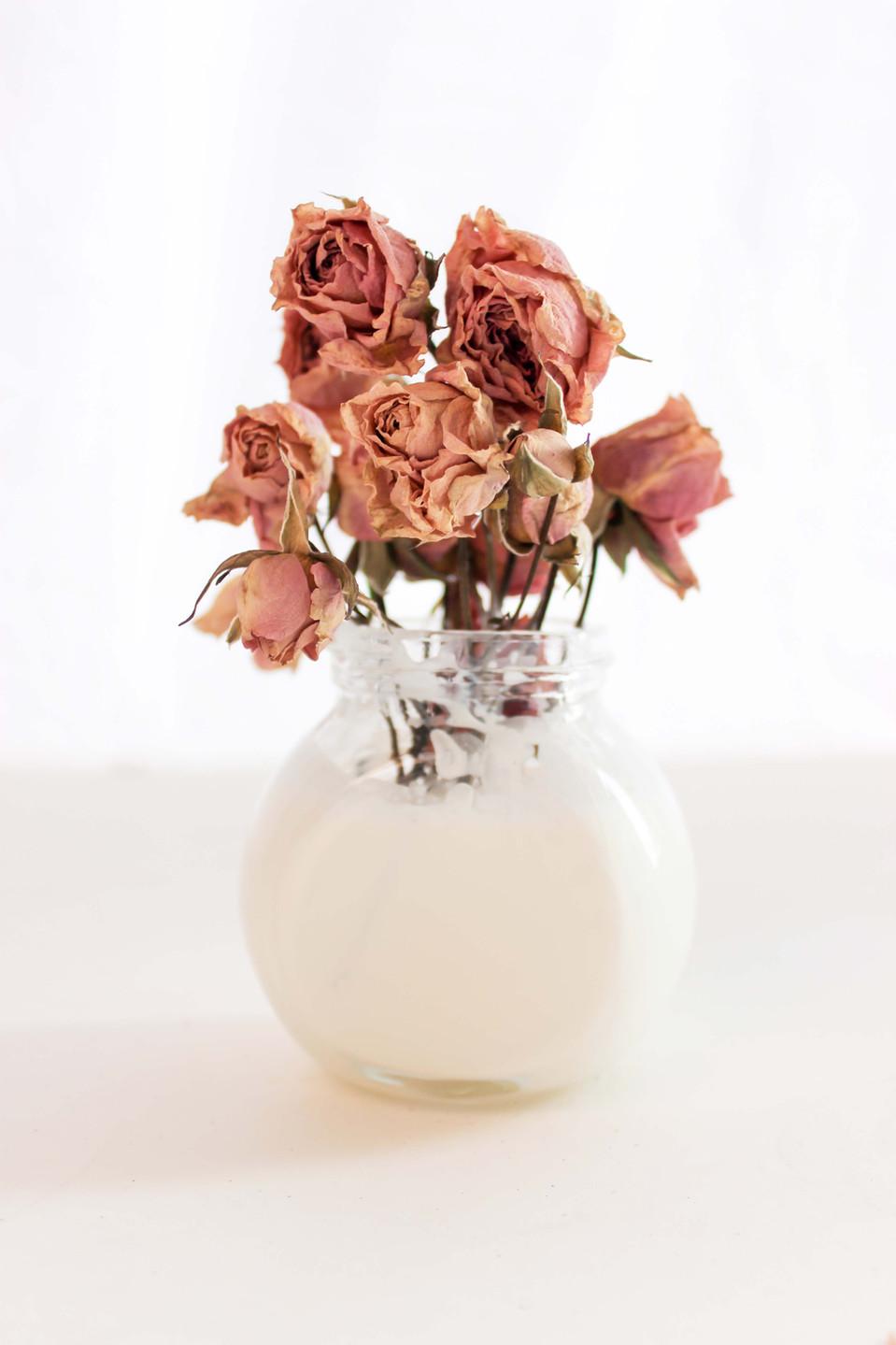 NMills-Roses.jpg
