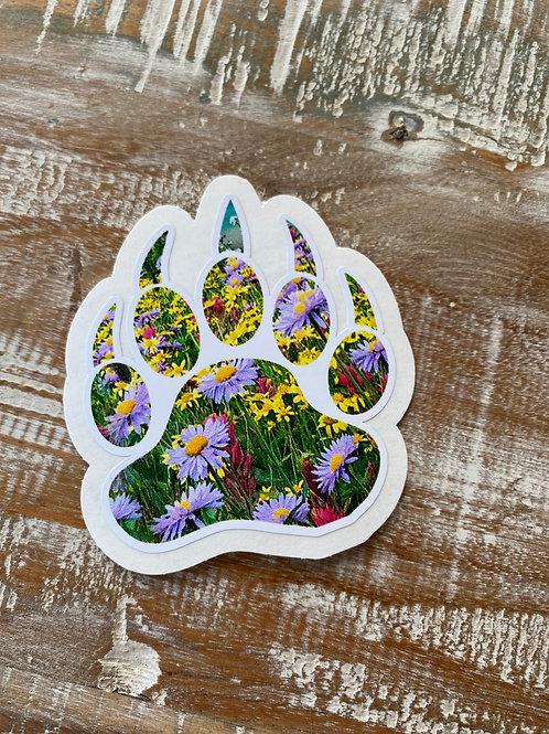 Wildflower bear paw