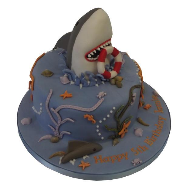 Shark Cake from £85