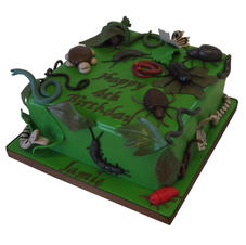 Insect Cake from £90