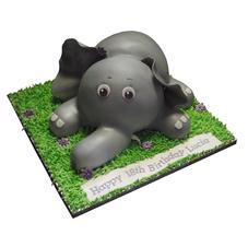 Elephant Cake from £125