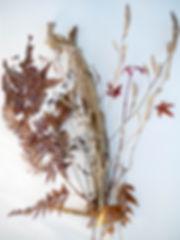 Seasonal bouquets for website december b