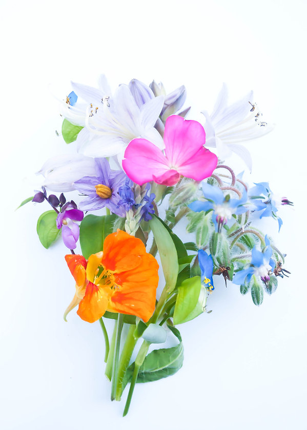 Seasonal bouquets for website-10.jpg