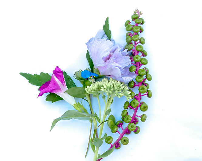 august bouquet website.jpg