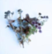 december frozen bouquet.jpg