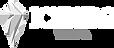 iceberg-logo_edited.png