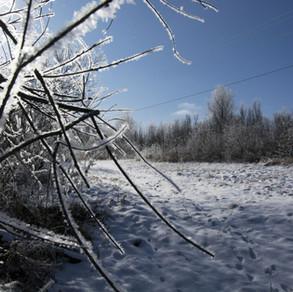 Первый снег -6.jpg