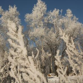 Первый снег-1.jpg