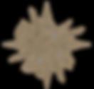 Logo_V01_edited_edited.png