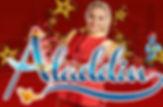aladdin, surrey theatre panto 2014