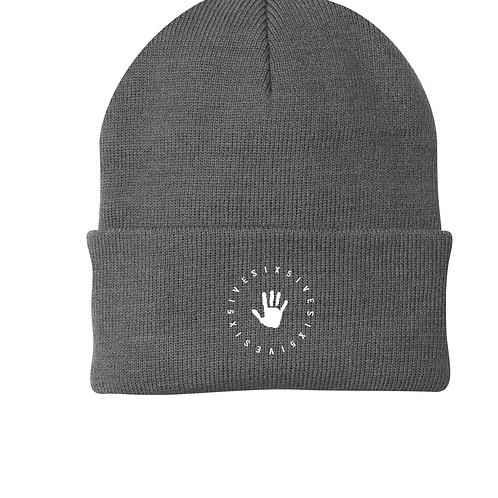 Six5ive Beanie - Gray
