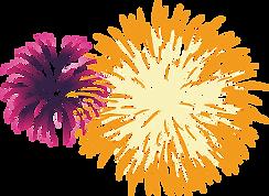 17-176596_fireworks-pyrotechnics-celebra