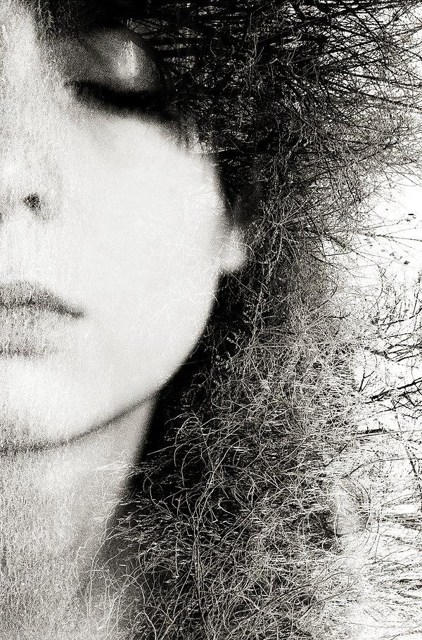 Metamorphosis | Marianna Jaszczuk