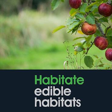 habitate.jpg