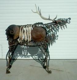 Elk_03
