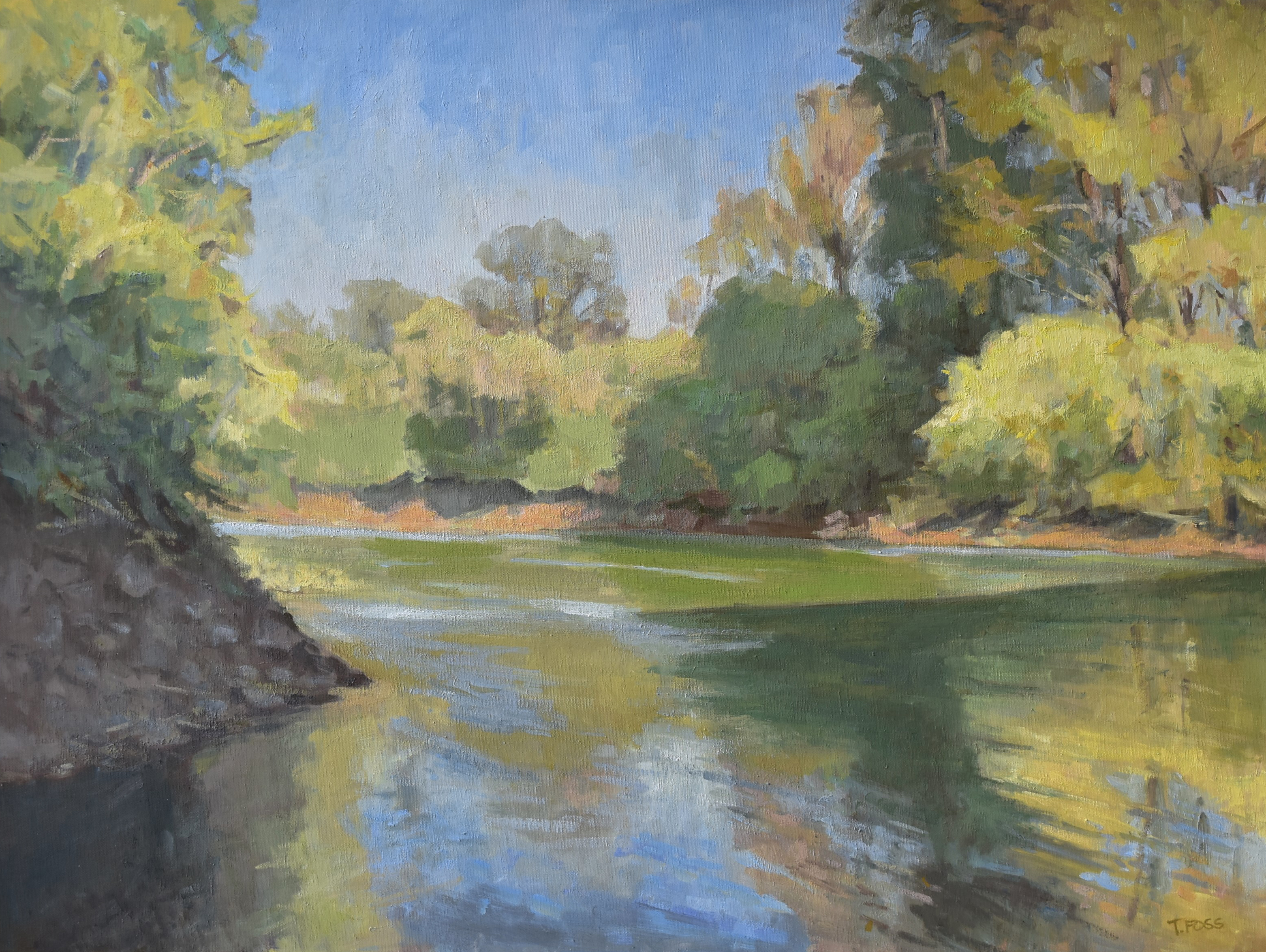 Shade at the River