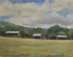 Farm Clouds