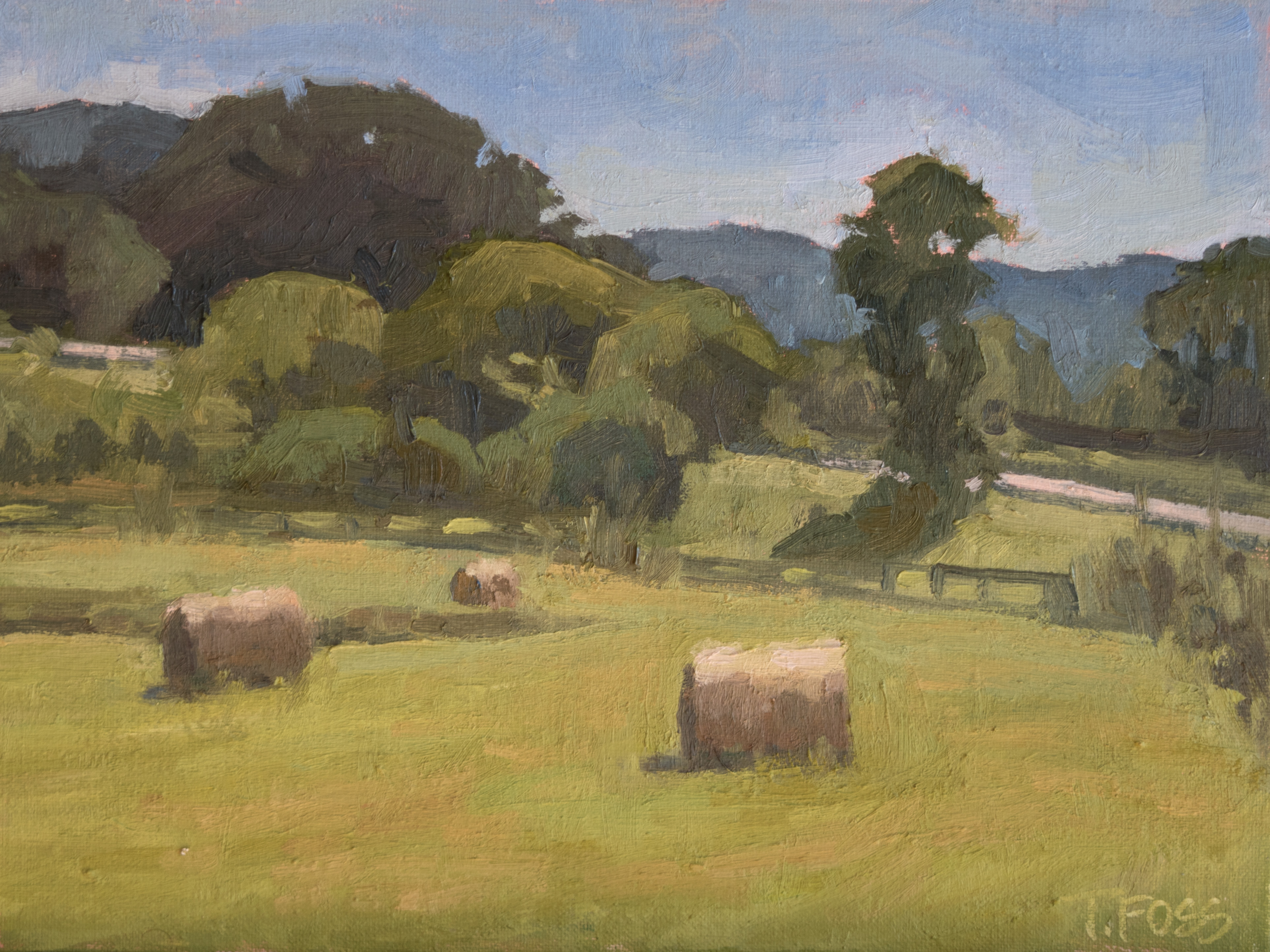 Bales at the Hill