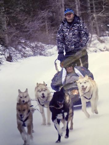 Dog Sledding in Banff- Canada (Respite Break)