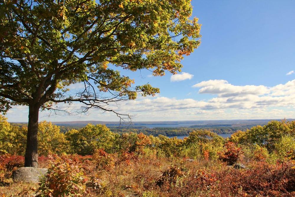 Blueberry Hill, Rome Maine, Central Maine, Belgrade Lakes Maine, Maine