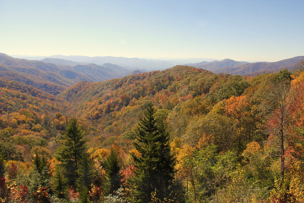 great smoky mountains, great smoky mountains tn, pigeon forge tn, pigeon forge