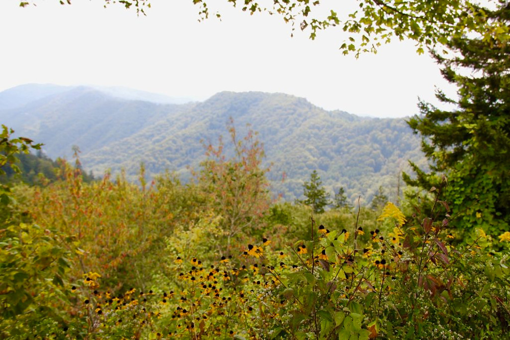 Great Smoky Mountains, Pigeon Forge Tennessee, Fall in Tennessee, NQC, National Quartet Convention, National Quartet Convention 2016