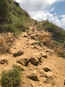 California Mountain Hike
