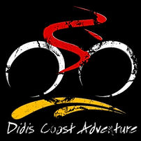 1_Logo Used Didi (002).jpg