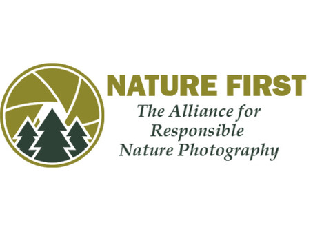 Nature First Photography