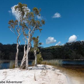 Cooloola Great Walk, Australia (Part 2)