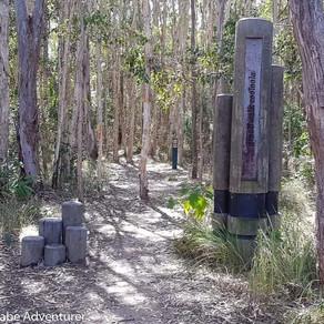 Cooloola Great Walk, Australia (Part 1)